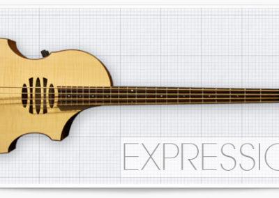expression_header
